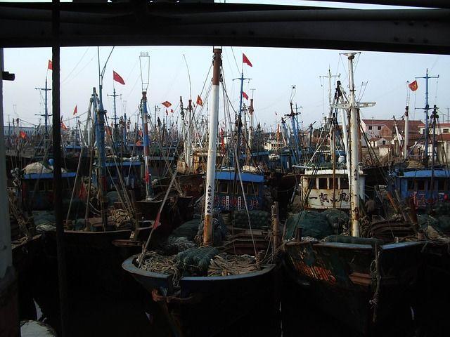 Portland Fishing Charter